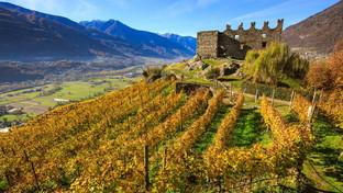 Valtellina: gustosi picnic nelle valli meno conosciute