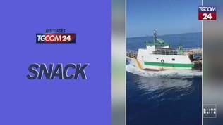 Lampedusa, peschereccio tunisino sperona motovedetta italiana: la Gdf apre il fuoco