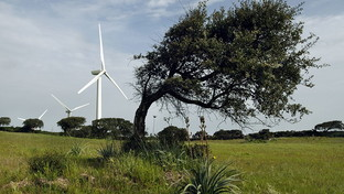 Energie rinnovabili, l'impegno di Enel Green Power per i nuovi parchi eolici