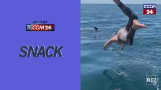 Non si accorge dello squalo bianco: il tuffo è da film horror