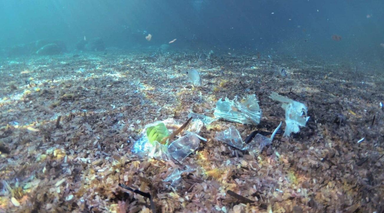 Ambiente, sui fondali degli oceani la quantità di plastica è 30 volte superiore a quella che galleggia in superficie