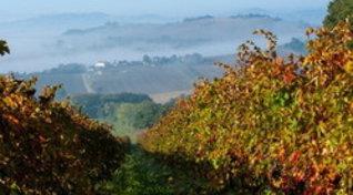 I fantastici colori dell'autunno nei parchi delle Marche