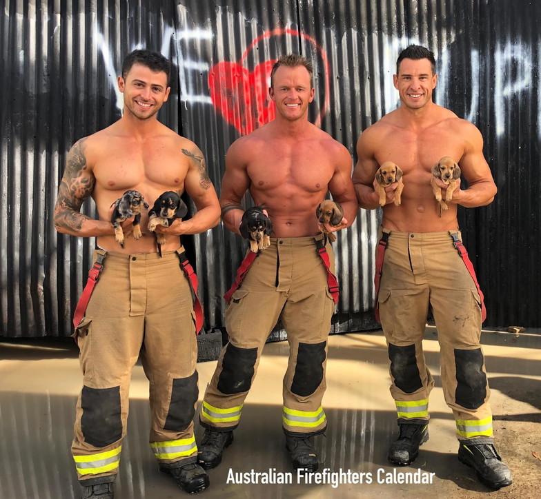 Il calendario 2021 dei pompieri australiani? A favore di koala e