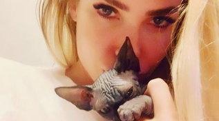 Ilary Blasi filma il parto della gatta, ma c'è un colpo di scena