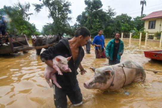 Uragano Eta, più di 63 morti e migliaia di sfollati in Centro America