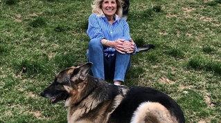"""Usa, con la vittoria di Joe Biden tornano anche i cani alla Casa Bianca:Major e Champ saranno i """"First dogs"""""""