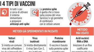Come funzionano i 10 vaccini anti-Covid più vicini alla licenza