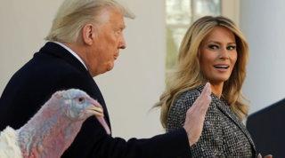 In barba al divorzio, Donald e Melania Trump graziano il tacchino mano nella mano