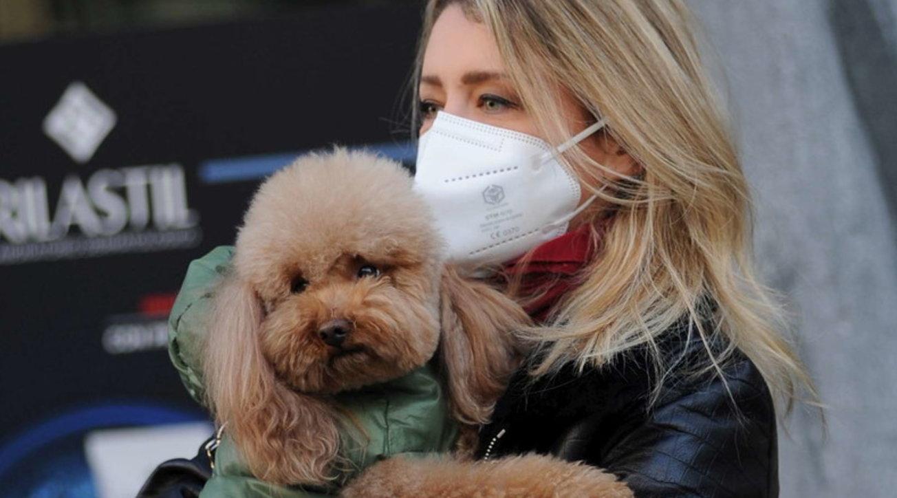 Elena Barolo fa compere a Milano sola... con il cane