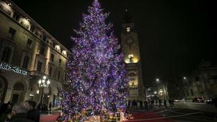 Natale, acceso in centro a Bergamo l'albero della speranza post-Covid