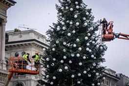 A Milano si prepara l'albero di Natale di fronte al Duomo