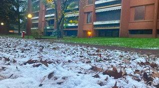 Milano si sveglia con la neve: primi fiocchi