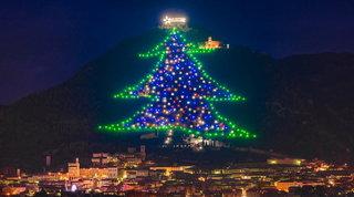 Gli alberi di Natale nelle piazze più belle del mondo