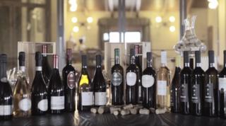 Colli della Murgia, i vini nati dalla passione di un sognatore