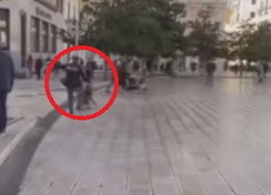 Taranto sotto shock: cane di quartiere preso a calci da un poliziotto