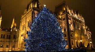 Luci, presepe, albero decorato: dove nascono le tradizioni del Natale