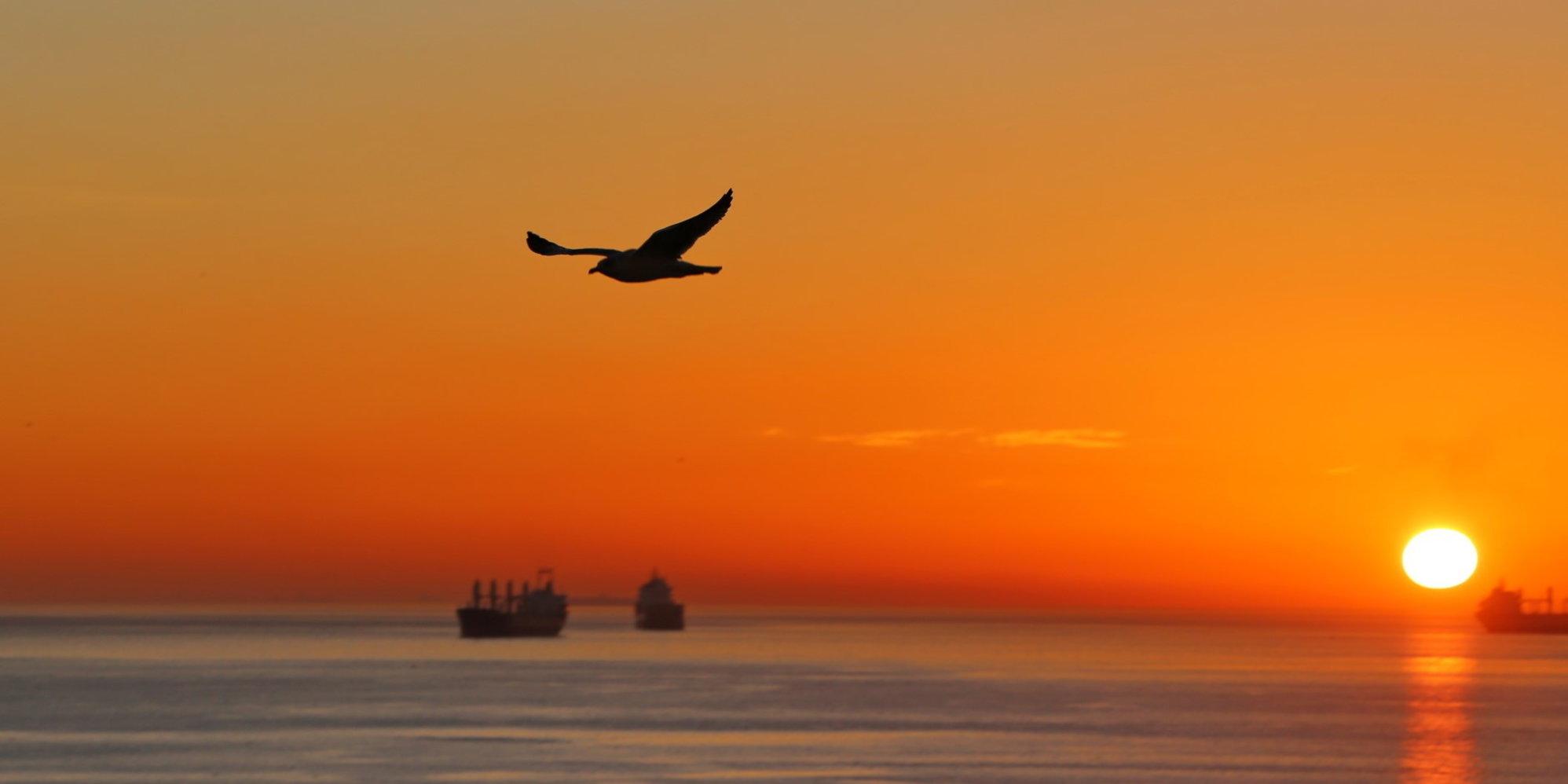 Caldo record negli oceani, il Mediterraneo è il mare più colpito