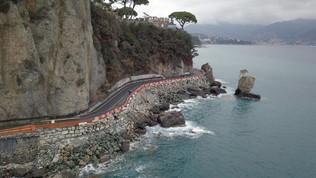 Maltempo in Liguria, spazzato via dal vento il pino simbolo di Santa Margherita