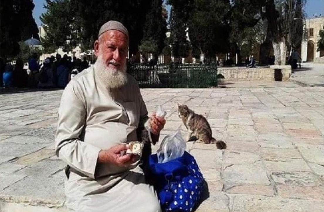 Gerusalemme, muore di Covid il custode dei gatti della Moschea dial-Aqsa