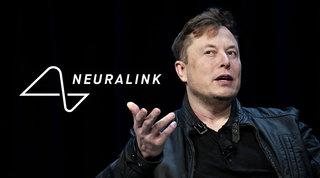 Elon Musk: con Neuralink una scimmia può già controllare un videogioco con la mente