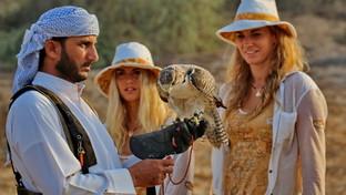 Dubai, capitale iper moderna dell'antica arte della falconeria