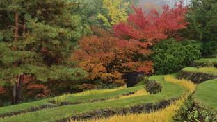 Merano: meraviglie botaniche a Castel Trauttmansdorff