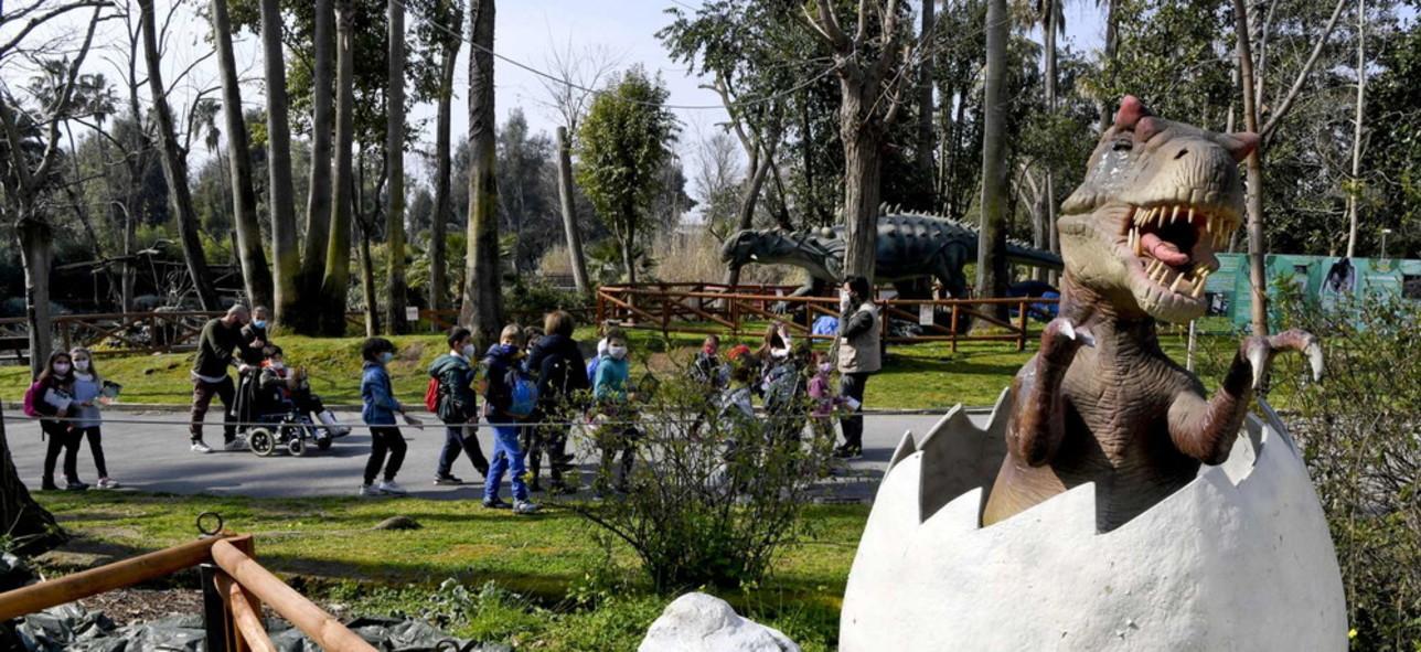 Coronavirus, in Campania lezione allo zoo per protesta contro la Dad