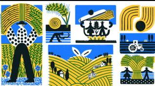 """Dalla semina al raccolto: 11 illustratori per il progetto artistico """"Grani d'autore"""""""