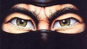 The Last Ninja: le avventure isometriche dell'ultimo ninja dei vecchi videogiochi
