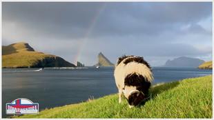 Isole Faroe - la straordinaria bellezza dell'arcipelago verde