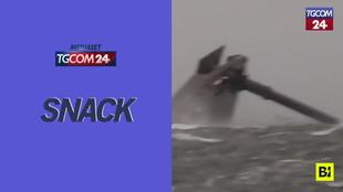 Usa, mare in tempesta nel Golfo del Messico: mercantile si capovolge