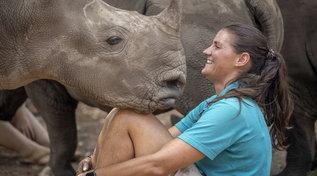 L'orfanotrofio dei rinoceronti (nascosto nella boscaglia) che salva i cuccioli dai bracconieri