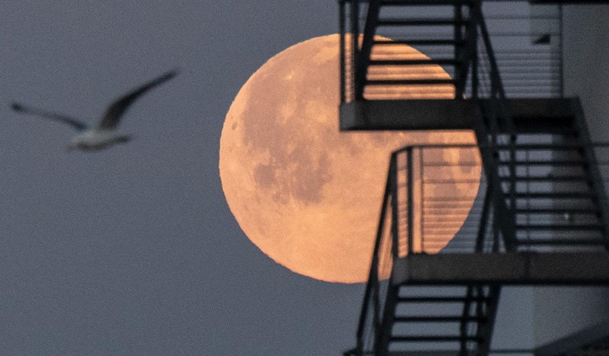 Le foto della Superluna rosa in tutto il mondo