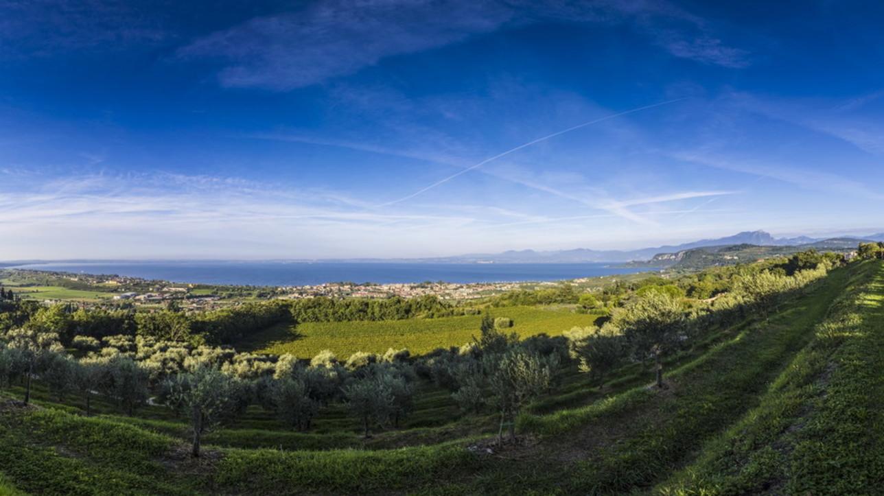 Garda: dal lago ai colli il cammino del Bardolino