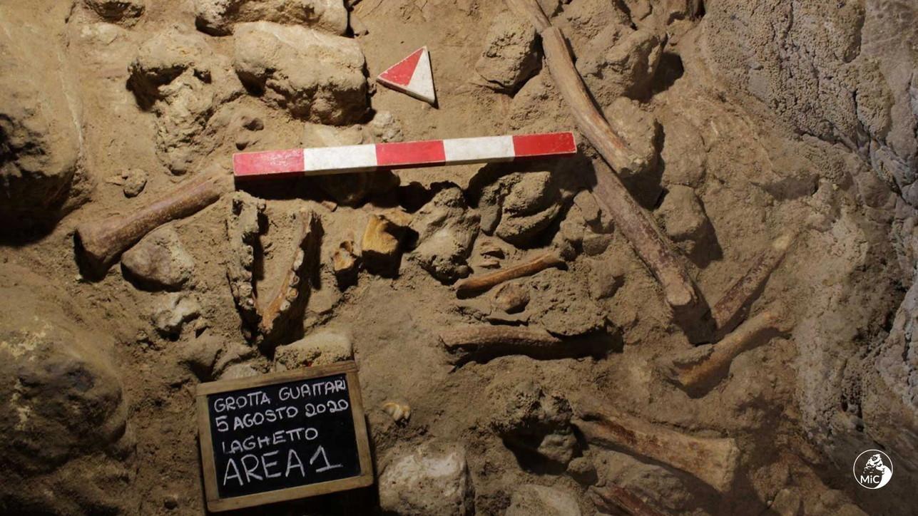 Circeo,scopertii resti di 9 uomini di Neanderthal
