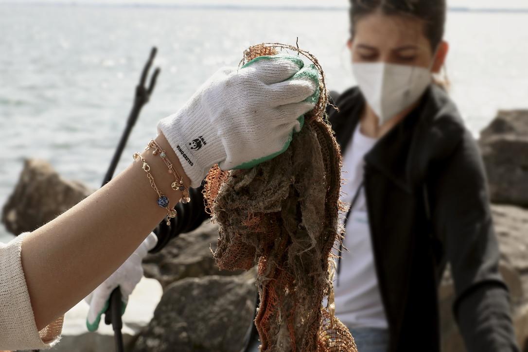 """""""Missione spiagge pulite"""": Calzedonia e WWF Italia insieme per l'ambiente"""