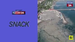 Schiuma grigiastra invade il mare di Istanbul: ecco cosa succede