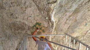 Archeologia, sorpresanelle Terme di Mercurio a Pozzuoli: un colpo di pennello riporta alla luce un mosaico