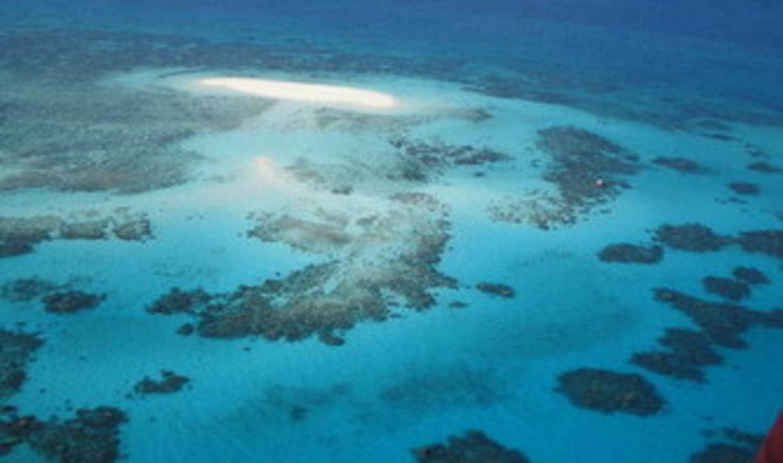 Unesco, allarmein Australia: la barriera corallina più grande del mondo è in pericolo