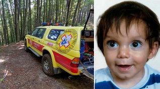 Scomparso bimbo di due anni, ricerche nei boschi del Mugello