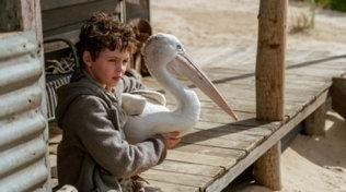 """""""Storm Boy - Il ragazzo che sapeva volare"""". le immagini del film"""