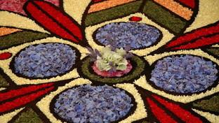 I quadri floreali di Poggio Moiano