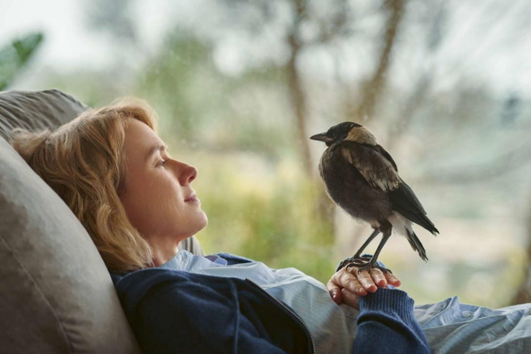 "Naomi Watts protagonista del film ""Penguin Bloom"""