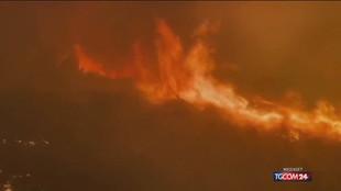 Incendi Usa, ecco i pompieri-eroi