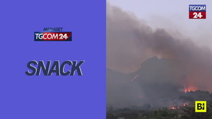 Incendi nella provincia di Palermo, sul capoluogo siciliano piove cenere