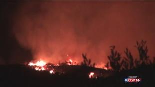 Incendi, allarme in Sicilia e Calabria: oltre 800 interventi