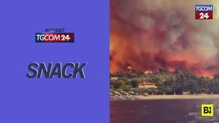 Grecia, incendio distrugge l'isola di Evia: turisti e residenti evacuati via mare