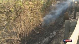 Incendi in Sicilia, notte di fuoco nelle Madonie