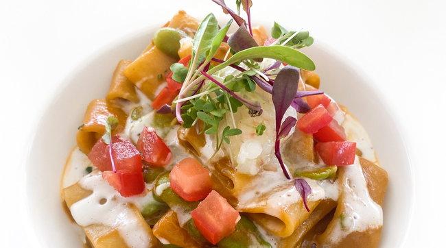 Calamarata fresca con scampi, fave, concasse di pomodoro e latte di cocco
