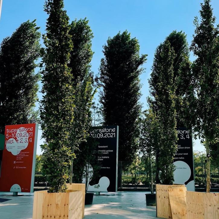 Salone del Mobile, un bosco di 100 alberiaccoglie i visitatori
